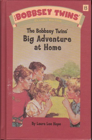 Image for The Bobbsey Twins'  Big Adventure at Home #8