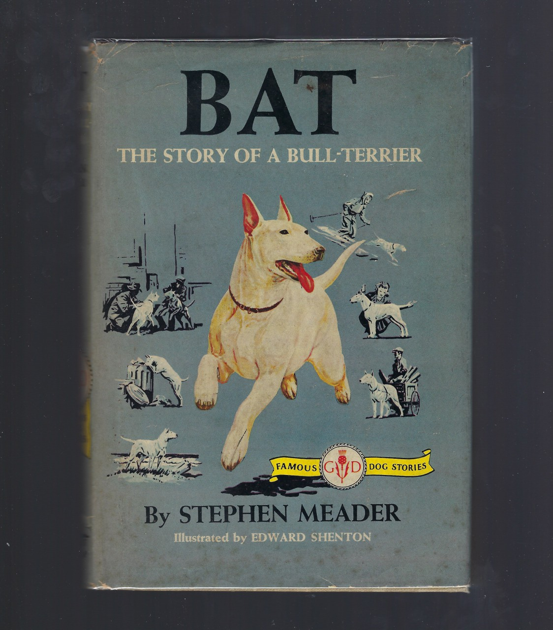BAT The Story of a Bull Terrier Famous Dog Stories Stephen W. Meader HB/DJ, Stephen W. Meader