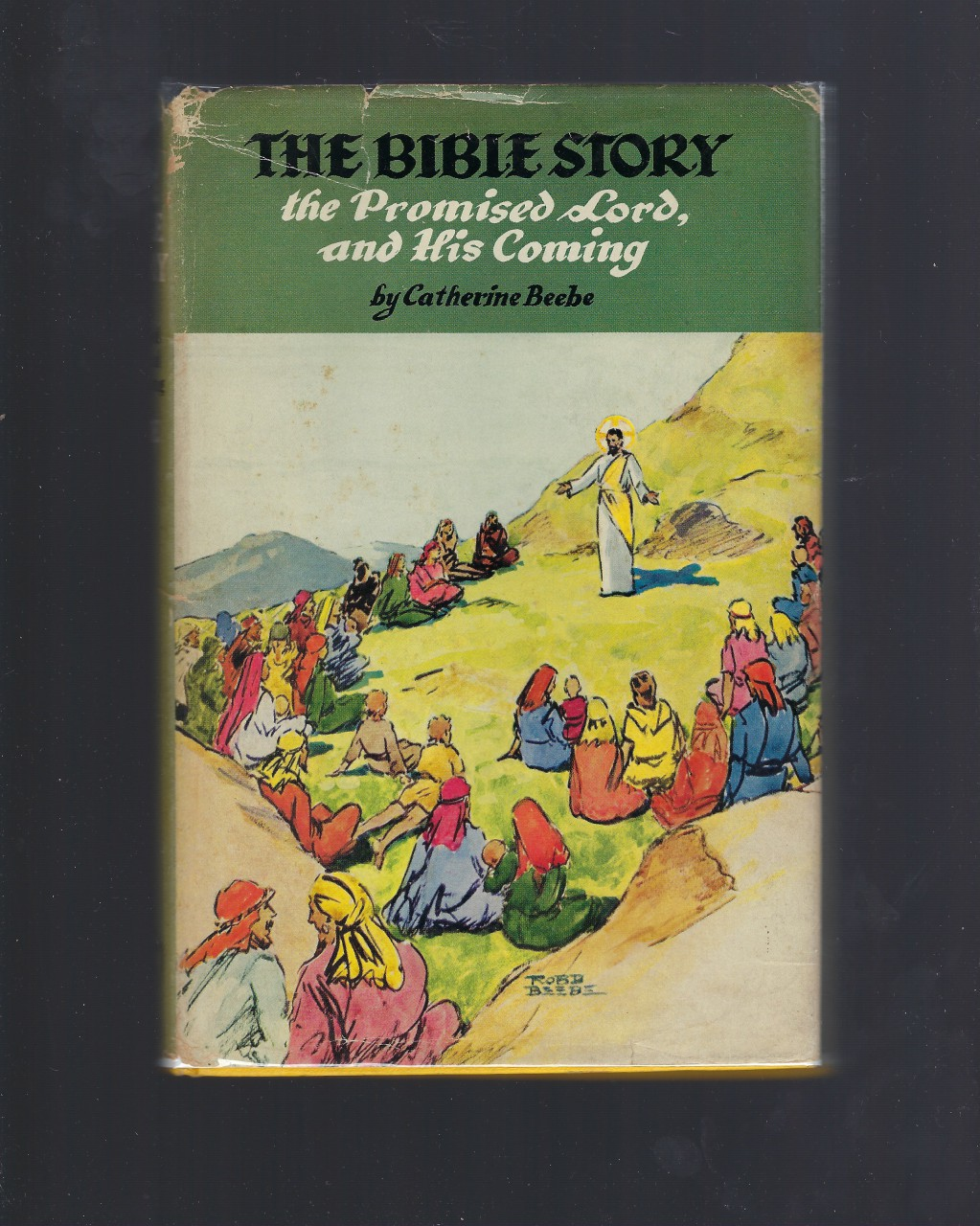 The Bible Story The Promised Lord and His Coming #20 Vision Catholic HB/DJ, Catherine Beebe