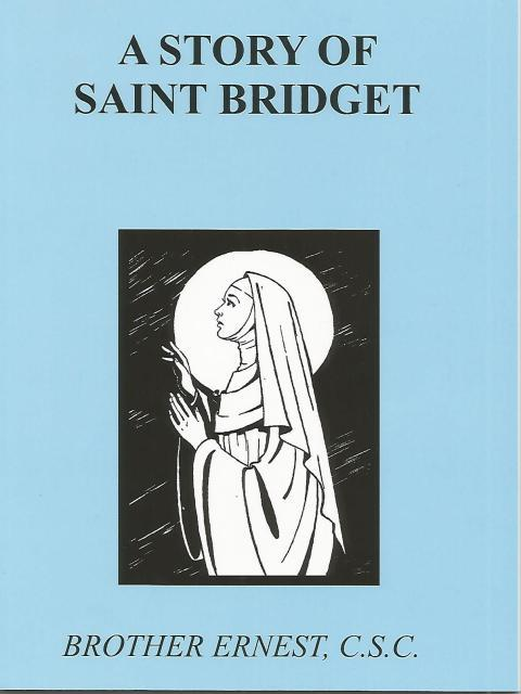 Image for A Story of Saint Bridget Dujarie Saint Book (Like New)