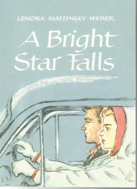 Image for A Bright Star Falls Beany Malone Lenora Mattingly Weber