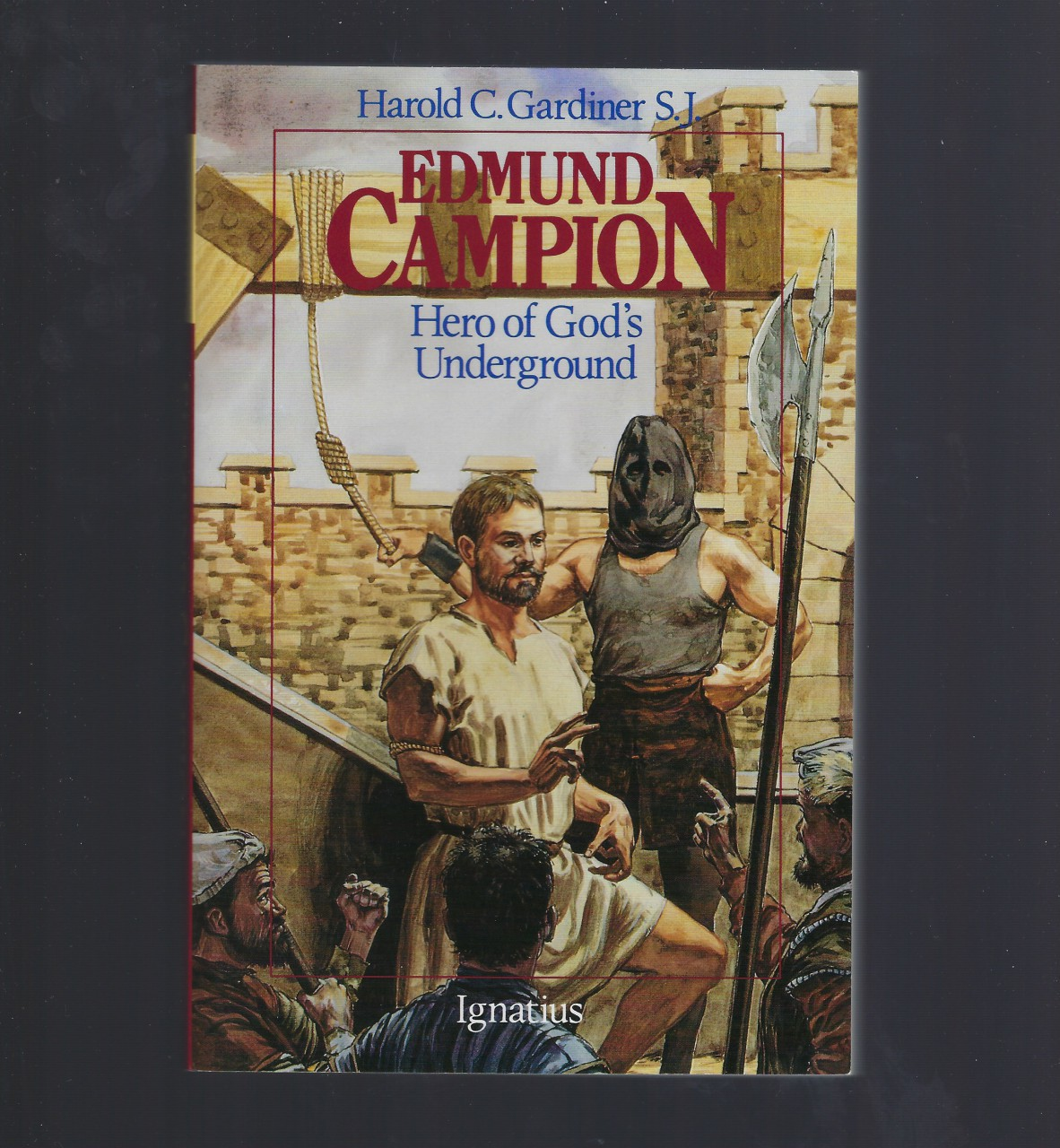 Edmund Campion: Hero of God's Underground (Vision Books), Harold C. Gardiner
