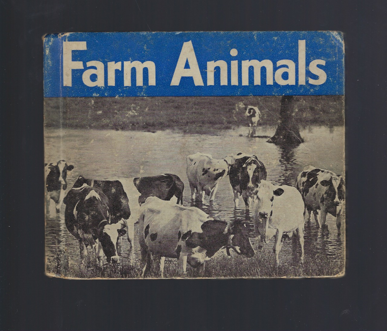 Farm Animals-Photographs and Descriptions of 100 Most Important Farm Animals, James Gilchrist Lawson,